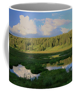 What's Left Of A Lake Coffee Mug by Sean Sarsfield