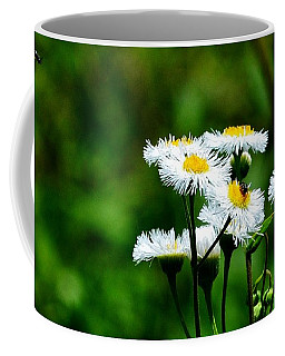 Bellis Daisy Coffee Mug
