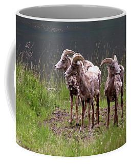 Whats Next Coffee Mug