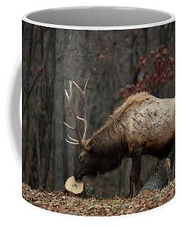 What's This? Coffee Mug