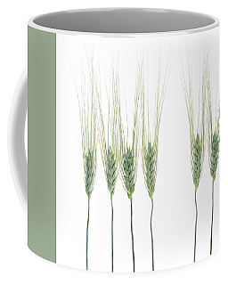 Coffee Mug featuring the photograph Wheat 1 by Rebecca Cozart
