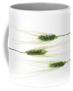 Coffee Mug featuring the photograph Wheat 3 by Rebecca Cozart