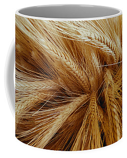 Wheat In The Sunset Coffee Mug