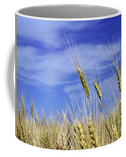 Wheat Trio Coffee Mug by Keith Armstrong