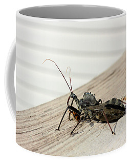 Coffee Mug featuring the photograph Wheel Bug With Prey by Kristin Elmquist