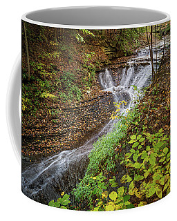 Coffee Mug featuring the photograph When The Leaves Fall by Dale Kincaid