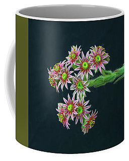 When The Power Of Love Overcomes The Love Of Power, The World Will Know Peace.  Coffee Mug