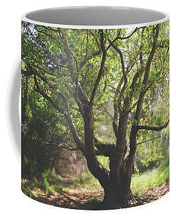 When You Need Shelter Coffee Mug by Laurie Search