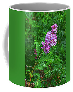 When You Need Someone To Belive In, Start With Yourself.  Coffee Mug