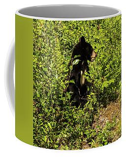 Where Are The Berries? Coffee Mug