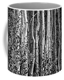 Where Coffee Mug