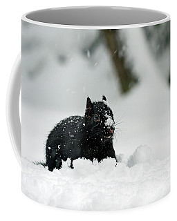 Coffee Mug featuring the photograph Where Did The Food Go - 365-281 by Inge Riis McDonald