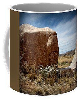 Coffee Mug featuring the photograph Where Have All The Flowers Gone by Joe Kozlowski