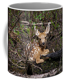Coffee Mug featuring the photograph Where Mother Said Stay by DeeLon Merritt