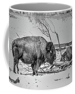 Where The Buffalo Rest Coffee Mug