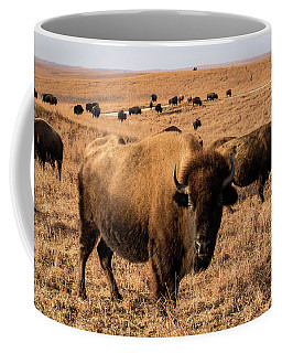 Where The Buffalo Roam Coffee Mug