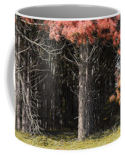 Where The Fairies Go Coffee Mug