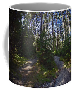 Which Path? Coffee Mug