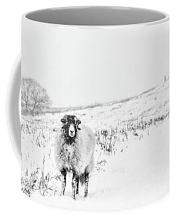 Which Way Is South? Coffee Mug