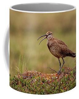 Whimbrel Hunting On The Tundra Coffee Mug