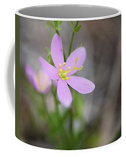 Whimsy Coffee Mug