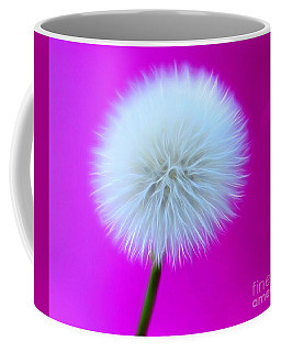Whimsy Wishes Coffee Mug