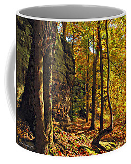 Coffee Mug featuring the photograph Whipp's Ledges In Autumn by Joan  Minchak