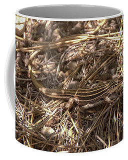 Whiptail Lizard Coffee Mug