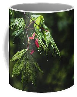 Whirlygig Coffee Mug