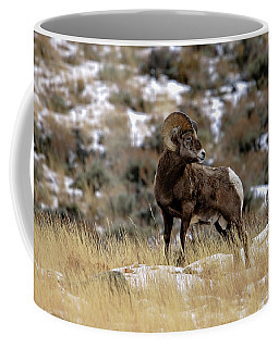 Coffee Mug featuring the photograph Whiskey Basin by Ronnie and Frances Howard