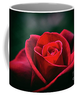 Coffee Mug featuring the photograph Whispers Of Passion by Linda Lees