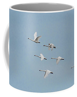 Whistling Swan In Flight Coffee Mug