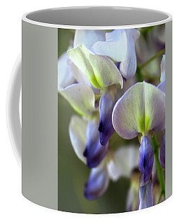 Coffee Mug featuring the photograph Wisteria White And Purple by Melinda Blackman