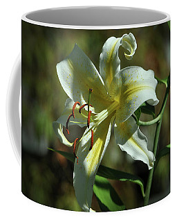 White And Yellow Asiatic Lilly No 1 Coffee Mug