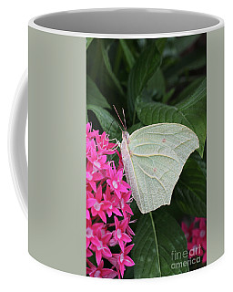 White Angled Sulphur #3 Coffee Mug