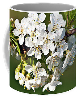 White Apple Blossoms Coffee Mug