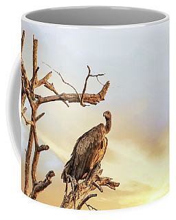 White-backed Vulture Coffee Mug