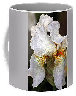 White Bearded Iris Coffee Mug by Sheila Brown