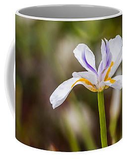 White Beardless Iris Coffee Mug