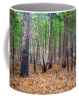White Birches In The Forest Coffee Mug
