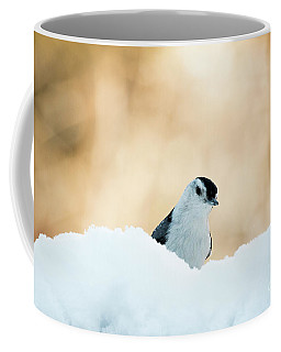 White Breasted Nuthatch In Snow Coffee Mug