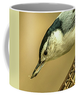 Coffee Mug featuring the photograph White-breasted Nuthatch by Jim Moore