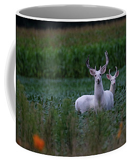 White Bucks Coffee Mug