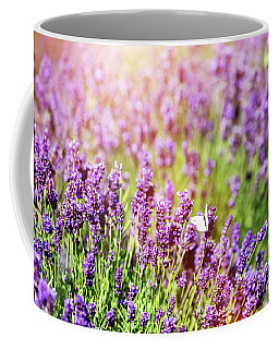 White Butterfly Sitting On Lavender Flower. Coffee Mug