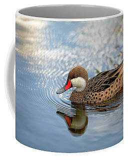 White-cheeked Pintail Coffee Mug