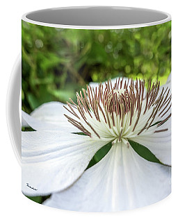 White Clematis Flower Garden 50146 Coffee Mug