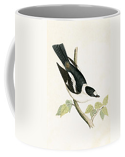 White Collared Flycatcher Coffee Mug