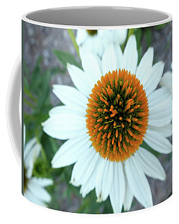 White Cone Flower Coffee Mug
