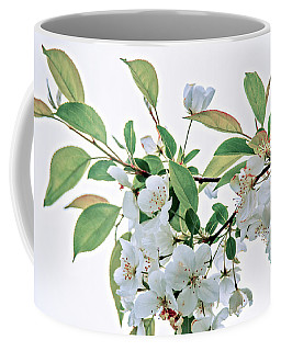 White Crabapple Blossoms Coffee Mug by Skip Tribby