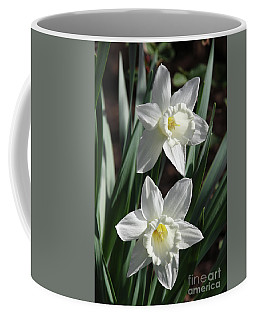 White Daffodils #2 Coffee Mug